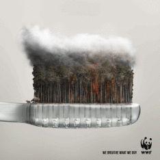 WWF gif