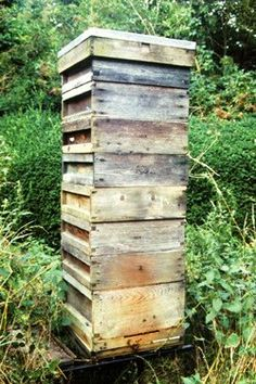All About Beekeeping
