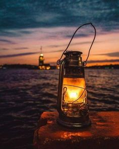 Light In The Dark, Light Up, Creative Photography, Art Photography, Cool Pictures, Cool Photos, Old Lanterns, Lantern Lamp, Water Lilies