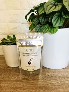 CBD Pet Treats to aid your pet's health. Especially good for sore joints and muscles. Healthy Blood Sugar Levels, Health Routine, Doctor Advice, Oils For Dogs, Cbd Hemp Oil, Healthy Pets, Pet Treats, Skin Care Treatments, Medical Prescription