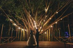 Love the warm glow coming through the tree branches | Matthew Evans Photography