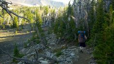 We depart north out of Camp Lake.  Here is a typical look of the trail we hiked on. Rocky in places, lava here and there, alpine forest and meadow, and a few stream crossings.  We had plenty of water for refilling of water bottles (with water purifier of course).