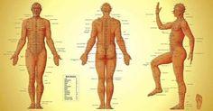 La thérapie par l'acupression, parfois appelée acupuncture par pression, est utilisée en Médecine Traditionnelle Chinoise depuis des milliers d'années. Elle consiste à appliquer des pressions sur les points d'acupression qui se trouvent le long des méridiens de votre corps pour favoriser la relaxation et traiter les maladies. Il existe plus de 400 points d'acupression sur le …