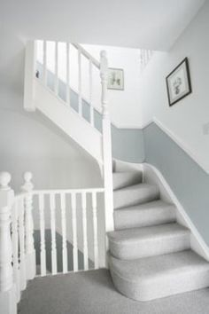 Dado rail hallway and stairs - grey below and white above Hallway Colours, Loft Conversion, Carpet Colors, Grey Hallway, Bedroom Loft, Loft Room, Light Gray Carpet, Carpet Stairs, Stairs