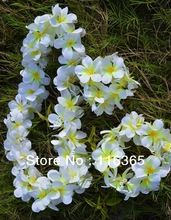 3pcs/set Hawaiian Lei, Head band,hand band wedding garland Hawaii Plumeria Flower Lei Free Shipping(China (Mainland))