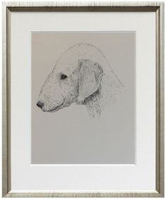 Bedlington Terrier print fine art print from 1935 by TheAntiqueDog