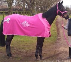43 Best Horse Rugs Images