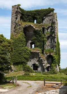 abandoned places Castles of Munster Ballymarkahan, Clare - - 4570420 - List of castles in Ireland - Wikipedia Beautiful Ruins, Beautiful Castles, Beautiful World, Beautiful Places, Abandoned Castles, Abandoned Mansions, Abandoned Buildings, Abandoned Places In The Uk, Castles In Ireland