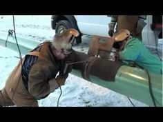 6g Pipe Welding Test 6010 Root Pass - YouTube