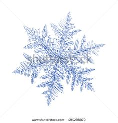 Pencil drawing: blue snowflake on white background. This sketch based on macro photo of real snow crystal: large stellar dendrite with ornate arms and fine symmetry. #494298979