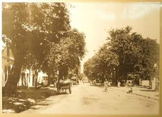 Central Plein Street to the Braak Stellenbosch