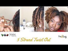 3 Strand Twist Out on Wet Hair | EDEN BodyWorks Coconut Shea - YouTube
