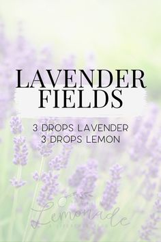 15 of the BEST summer diffuser blends for essential oils. From After Sunset to Fresh Air to Sweet Dreams to Liquid Sunshine, there's a scent to evoke every summer mood. #essentialoils Making Essential Oils, Doterra Essential Oils, Young Living Oils, Young Living Essential Oils, Essential Oil Diffuser Blends, Diffuser Recipes, Sweet Dreams, Sunshine, Sunset