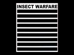 Insect Warfare - Noise Grind Power Death