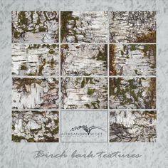 Birch bark textures Natural Birch BarkDigital Paper white