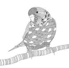 #ClippedOnIssuu from Millie Marotta's Animal Kingdom sampler