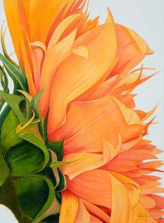 ventulett watercolors