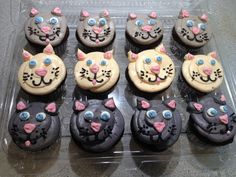 Meow!  Kitty cat cuppies