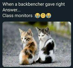 Latest Funny Jokes, Funny Jokes For Kids, Funny School Jokes, Very Funny Jokes, Crazy Funny Memes, Really Funny Memes, Funny Laugh, Funny Relatable Memes, Hilarious