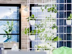 office design, architecture, construction, interior design, etnakft, plants decor wall