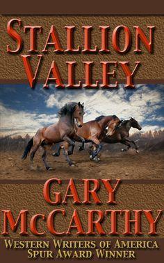 Stallion Valley by Gary McCarthy