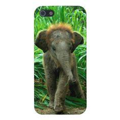 Elephant iPhone 5/5S Case
