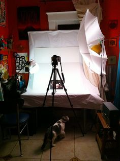 DIY Lightbox - sunny window with paper/wax paper and a white umbrella!