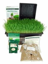 Wheatgrass Growing Kit + Tornado Stainless Steel Juicer
