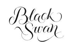 Black Swan #tanyacherkiz #letters #lettering #handlettering #typography #dailytype