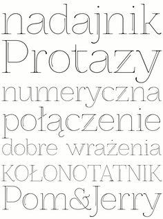 decorative font ZnikomitNo25 by gluk - multiple styles, it looks like
