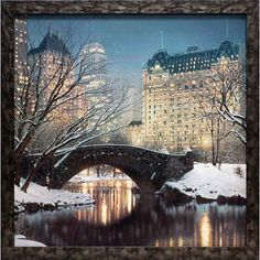 North American Art 'Twilight in Central Park' by Rod Chase Framed Photographic Print