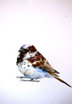 Original watercolor of a little sparrow. A common bird with stunningly patterned feathers, I can almost see the loaf of bread he is eyeing. This