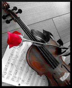 Piano Y Violin, Violin Art, Piano Music, Acoustic Guitar Photography, Violin Photography, Music Artwork, Art Music, Amazing Dp, Gcse Art Sketchbook