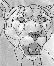 cougar design pattern