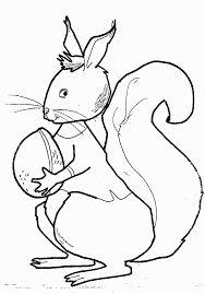 رسومات اطفال سهلة للتلوين حيوانات أليفة برية Draw Animal For Kids Animal Drawings Draw Animals For Kids Animals For Kids