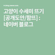 고양이 수세미 뜨기 [공개도안/함뜨] : 네이버 블로그