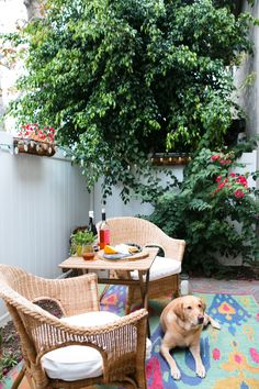 Perfect outdoor space, with COLOR! Kathleen Barnes' Orange County Home Tour #theeverygirl