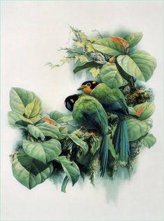 Artodyssey: Zeng Xiao Lian