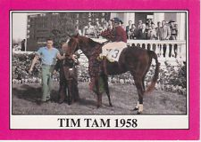 Tim Tam  As A Three Yo, 9 Starts 8 Wins 1 Second, Won The Kentucky Derby And Preakness, And In The Belmont, Was Moving Up On Leaders At The Quarter Pole But Then Shattered His Sesamoid Bone And Ran Second While 5 1/2 Lengths Behind Winner. Retired Immediately After The Belmont.