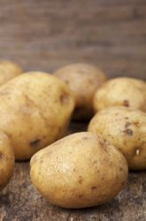 Science Fair: Under What Conditions Do Potatoes Sprout The Fastest