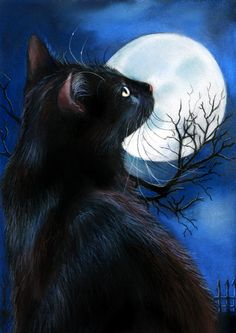 Black Cat Moonstruck - original pastel by Angela-Carmen Griehl-Groß (via ebay)