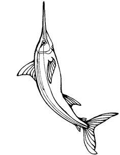 swordtail fish coloring pages - photo#11