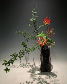 Contemporary Flower Arrangements, White Flower Arrangements, Ikebana Flower Arrangement, Ikebana Arrangements, Purple Flowers, White Flowers, Beautiful Flowers, Art Floral, Bonsai