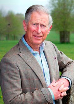 Charles, Prince of Whales Involved in many charities. Promotes environmental awareness and wildlife conservation.  He is a hard working Royal.