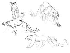 Cougar Concepts_2 by ~davidsdoodles on deviantART