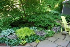 Shade garden with ornamental grass, hostas, heuchera, and some hardscaping. Landscaping. :