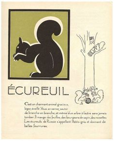 1930s French Art Deco Squirrel Print on Chairish.com