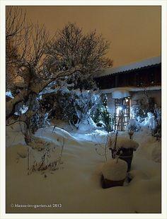 nacht im garten 2013-01