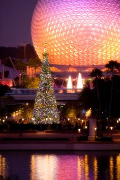Christmas at Walt Disney World - Epcot