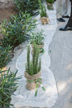 Aggeliki and Dimitris boho style wedding in Crete was so stylish you would think it was taken right out of a magazine! Aggeliki was wearing a chic wedding Herb Wedding, Wedding Flowers, Rustic Wedding Centerpieces, Ceremony Decorations, Romantic Weddings, Elegant Wedding, Rustic Wedding Inspiration, Greece Wedding, Woodland Wedding
